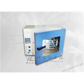 鼓风干燥箱/烘箱厂/电热鼓风干燥箱