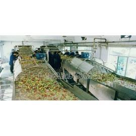 供应休闲食品加工设备,输送机、滚筒机械、商用洗碗机、塑料包装机械、肉制品加工设备