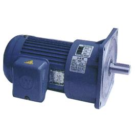 Vertical gear motors LQ-03