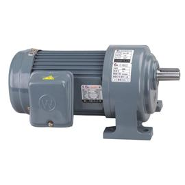Horizontal gear reducer motor LQ-02