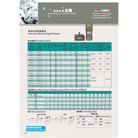 Single phase IK induction motor