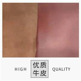 油蜡树膏皮图片