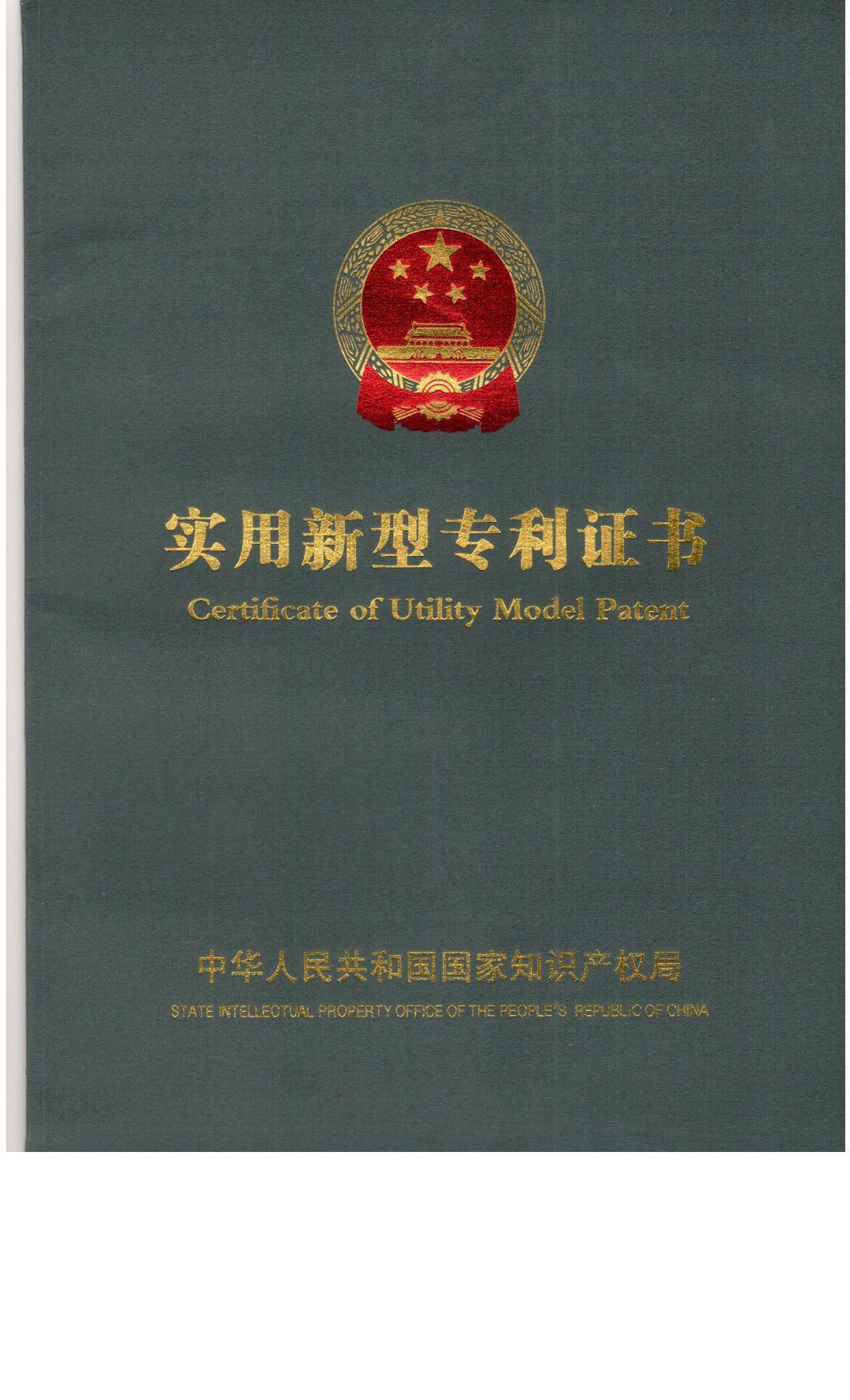 The patent certificate1