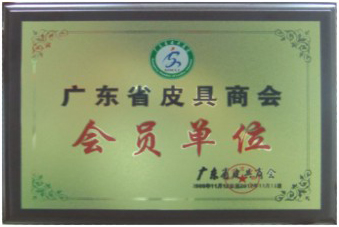 Guangdong Province leather chamber of Commerce members