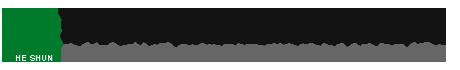页头英文logo