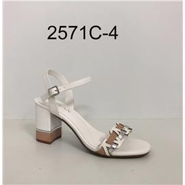 2571C-Y04