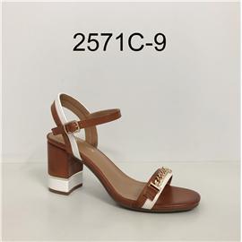 2571C-Y09