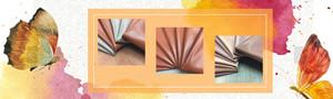 【国外资讯】坎普尔100多家制革厂正迁往加尔各答皮革生产基地
