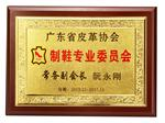 Shoe making Committee of Guangdong Leather Associationmittee of Guangdong Leather Association