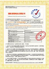 Domain Certificate