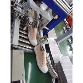 硫化鞋自动封压机图片