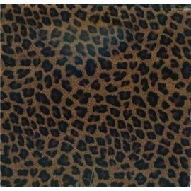 leopard grains (SR206) 020