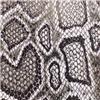 动物纹系列-蛇纹|2021-16|双祥皮革